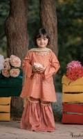 Beautiful block printed khaadi cotton paired with jamawar gharara and net dupatta