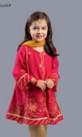 Zari embroidered chiifon paired with jamawar pants and net dupatta