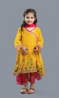 Multi embroidered chiifon paired with jamawar pants and net dupata