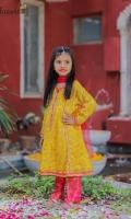 Zari embroidered soft chiffon paired with jamwar pants and net kingri duppata