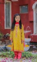 Zari embroidered soft chiffon paired with jamwar pants and net kingri duppta