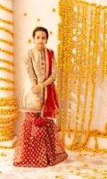 Embroidered Banarasi Tissue Shirt Embroidered Net Garara Chiffon Dupatta Embroidered Pouch
